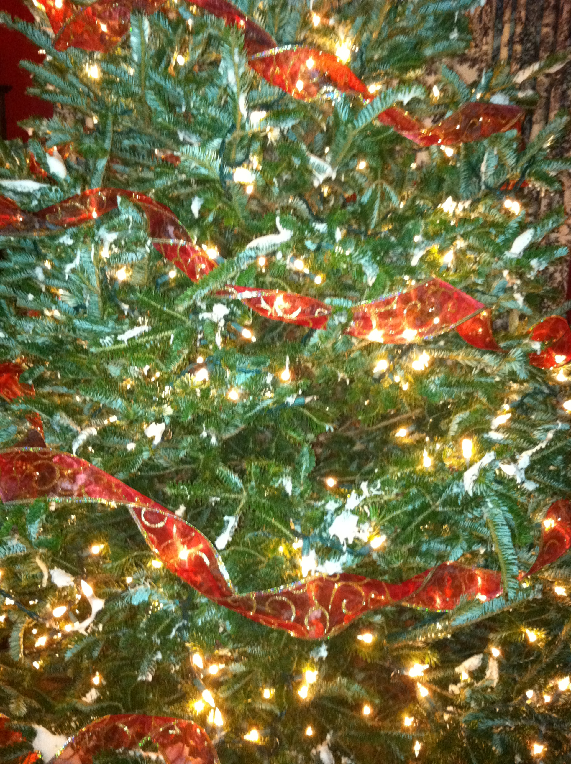How to trim a beautiful christmas tree encouraging - Christmas tree with ribbons ...